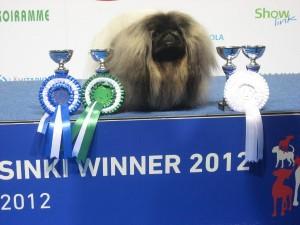 Helsinki Winner-2012 (600x450)